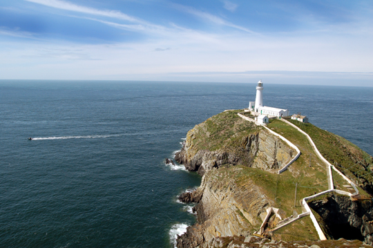South Stacks Anglesey